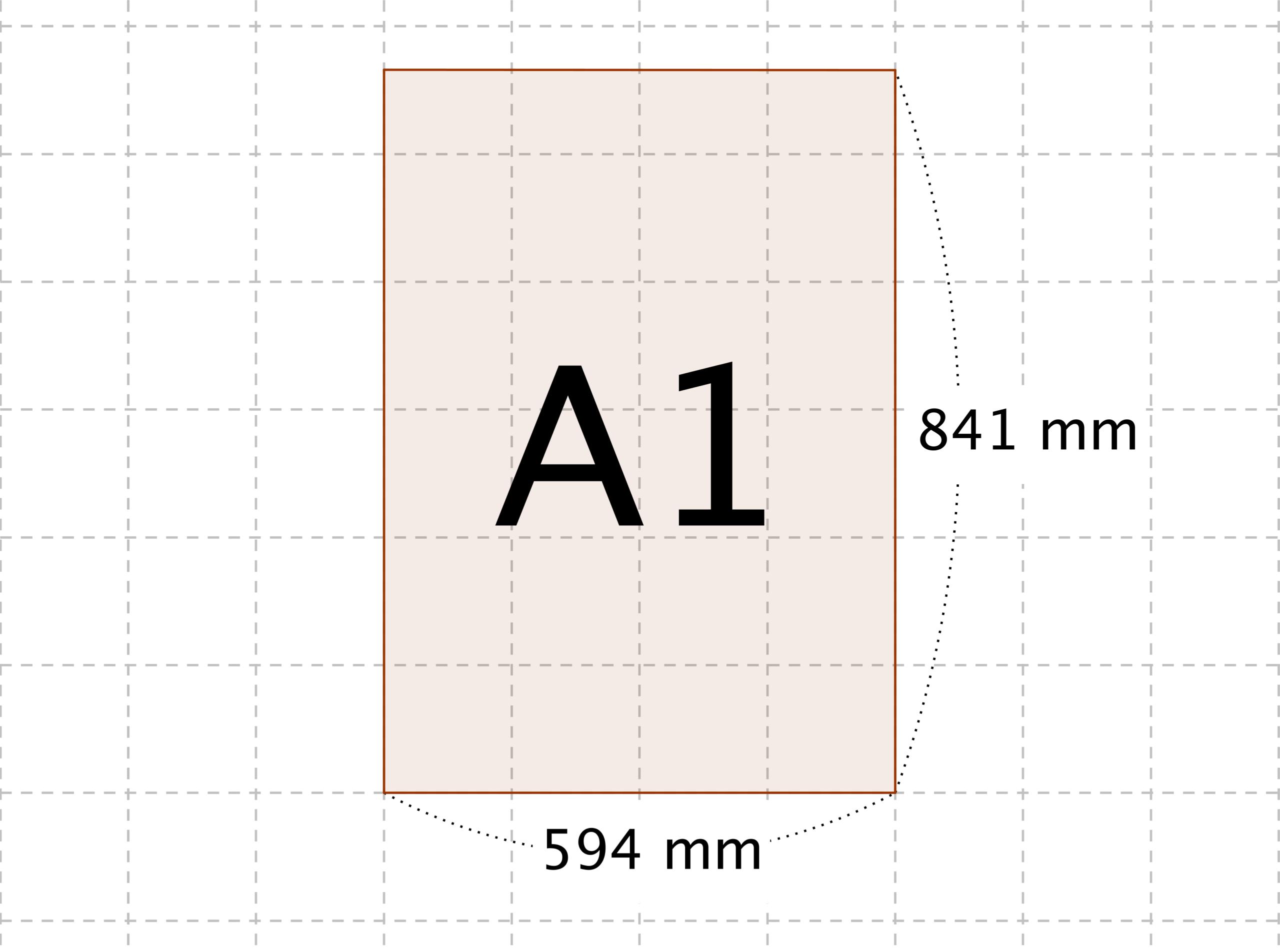 大き さ a1